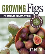 Growing Figs in Cold Climates