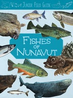 Junior Field Guide: Fishes of Nunavut
