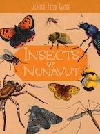 Junior Field Guide: Insects of Nunavut