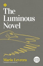 The Luminous Novel