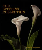The Stebbins Collection