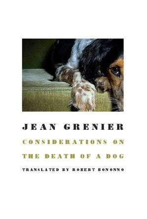 Considerations on the Death of a Dog
