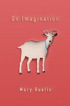 On Imagination