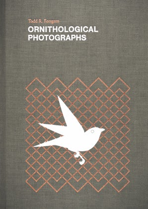 Ornithological Photographs