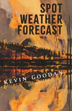 Spot Weather Forecast